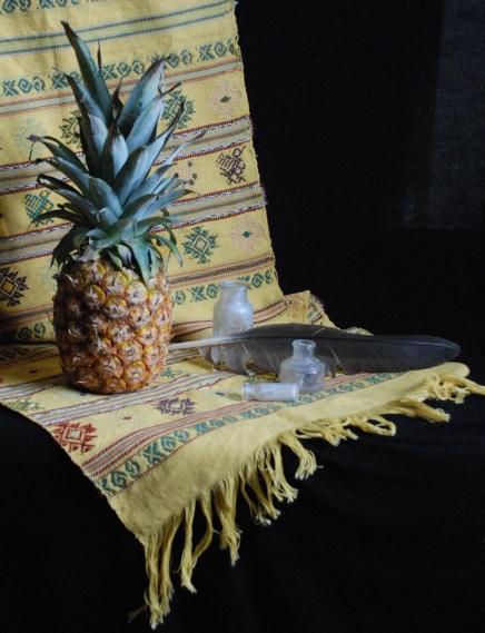 Open Studio Still Life Pineapple