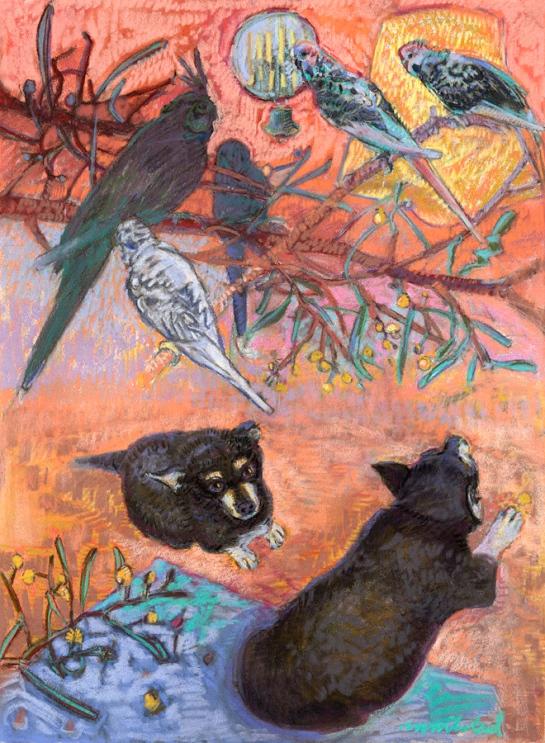 Birds Eye View - Jack
