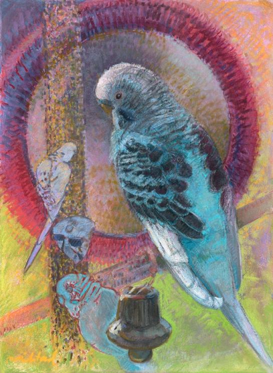 Birds Eye View - Pepper