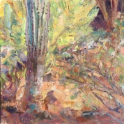 Low Light on Tumamoc_Oil on canvas_Meredith Milstead