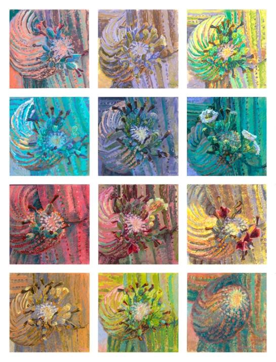 sagauro-bloom-2016-42x54-pastel-plein-air-m-milstead